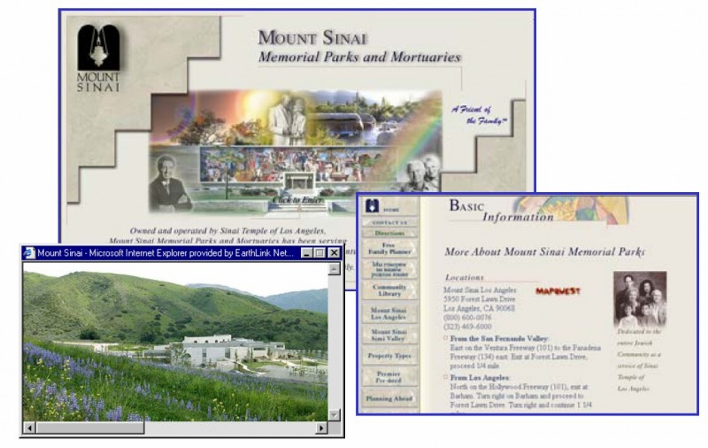 Mt Sinai Home Page - induced info